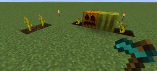 Семена тыквы minecraft