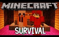 Box - Survival - NibzLeague